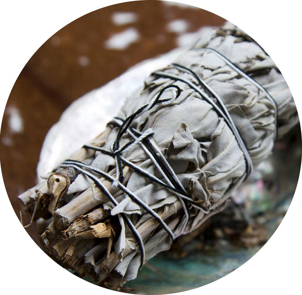 dried-sage